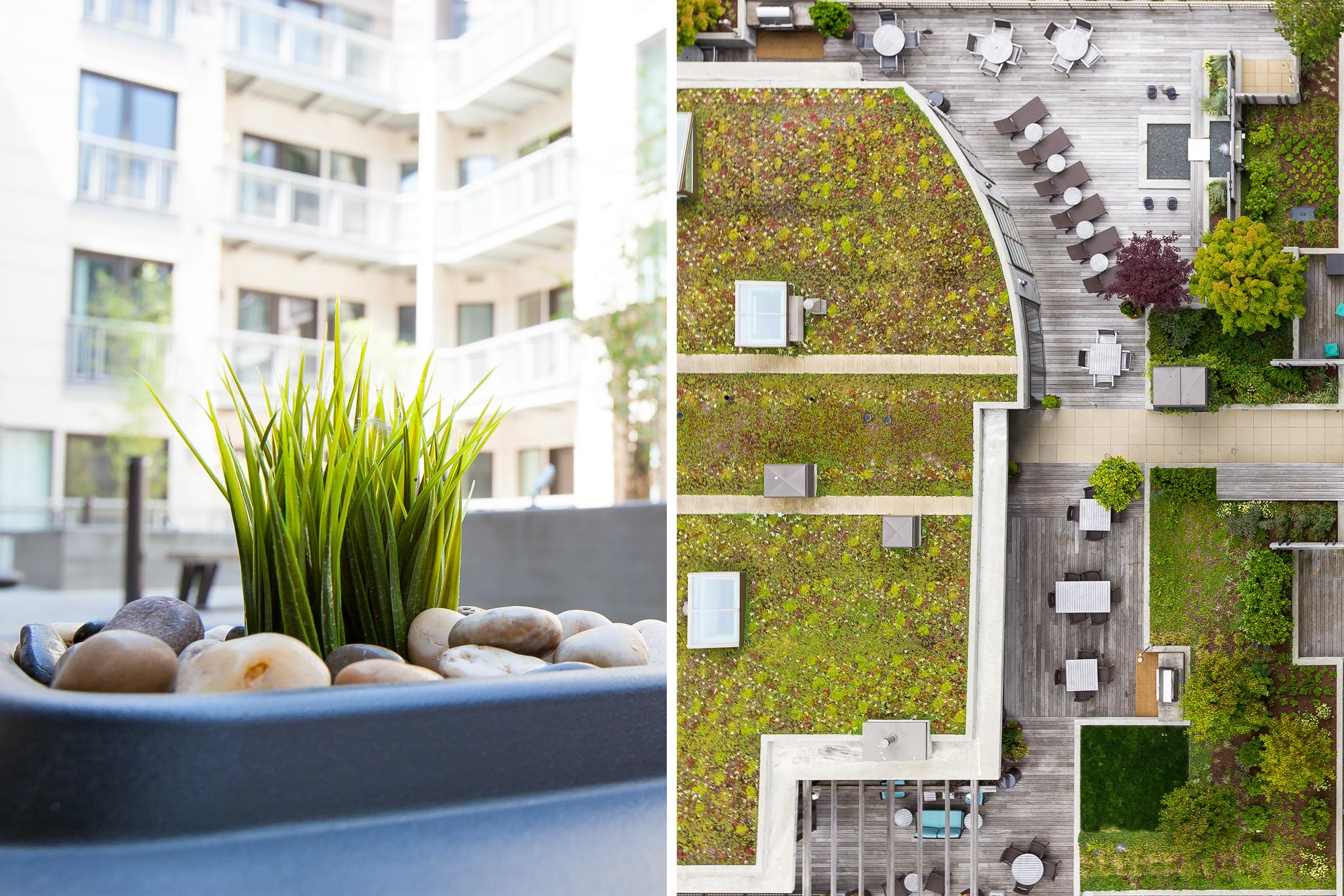 Closeup and Aerial view of courtyard with green roof